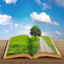 Droga do wolności finansowej